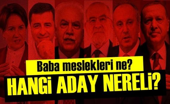 Hangi Aday Nereli?