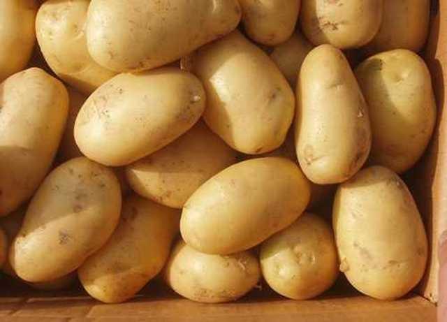Çiğ Patates Suyunun Faydasına İnanamayacaksınız!