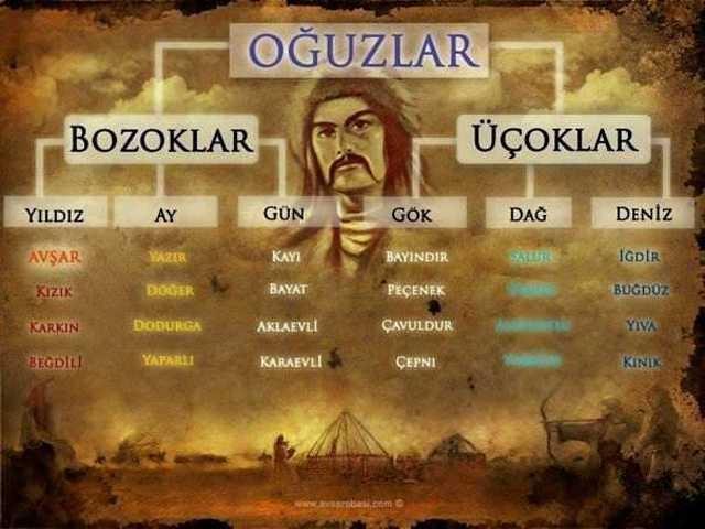 işte İl İl Türklerin Soy Ağacı...