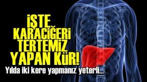 Karaciğeri Tertemiz Yapan Kür!