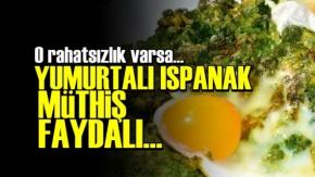 O Rahatsızlık Varsa Yumurtalı Ispanak Yiyin!