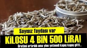 Kilosu 4 Bin 500 Lira Ama Kapış Kapış!