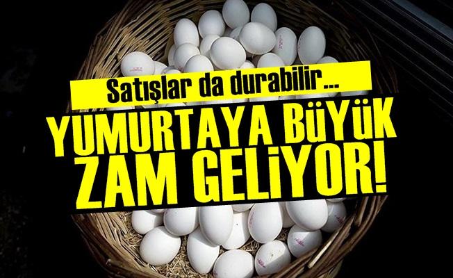 Yumurtaya Büyük Zam Geliyor!