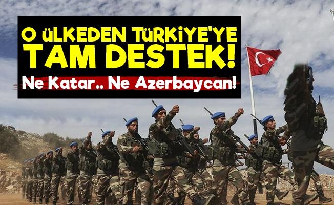 O Ülkeden Barış Pınarı'na Tam Destek!