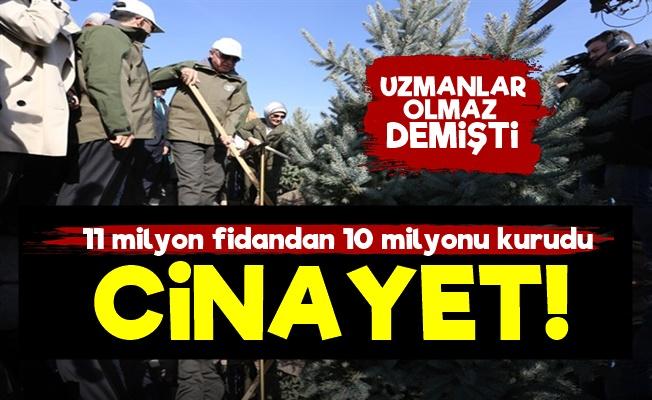AKP'nin 'Fidan Şovu' Cinayete Dönüştü!