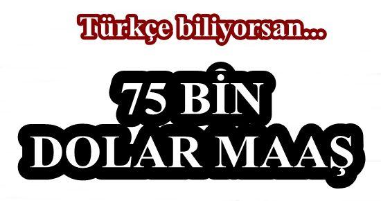 75 BİN DOLAR MAAŞ İLE TÜRKÇE BİLEN AJAN...