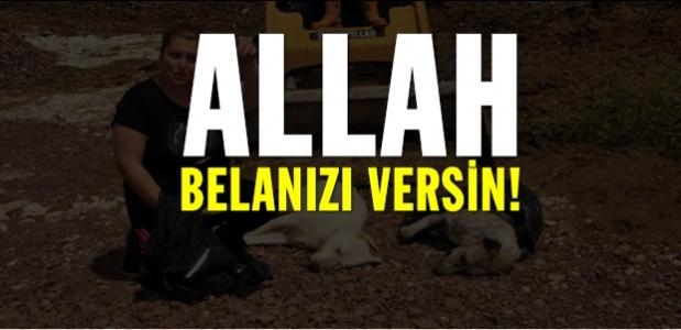 ALLAH SORSUN!