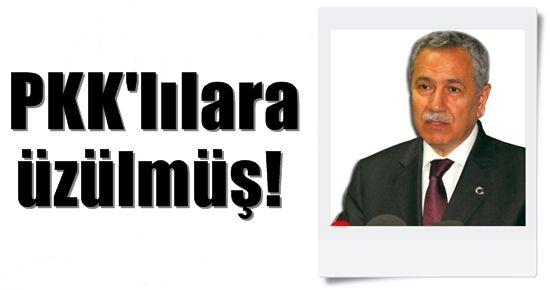 ARINÇ PKK'LILARA ÜZÜLMÜŞ!