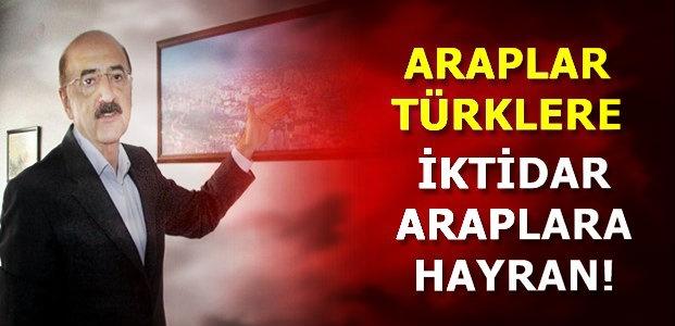 'BEĞENİLEN TÜRK TOPLUMUNUN BATI YÜZÜ''