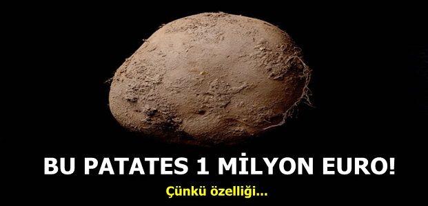 BİR TEK PATATES İÇİN SERVET...