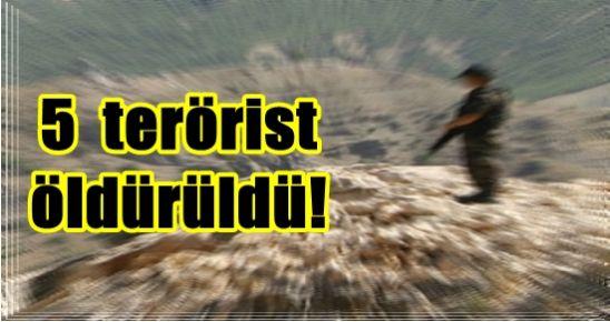 CUDİ'DE 5 PKK'LI ÖLDÜRÜLDÜ