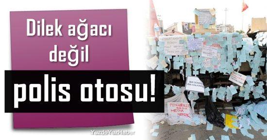 DİLEK AĞACI DEĞİL POLİS OTOSU!