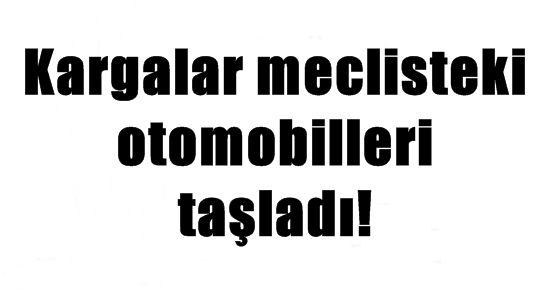 KARGALAR MECLİSTEKİ ARAÇLARI TAŞLADI!