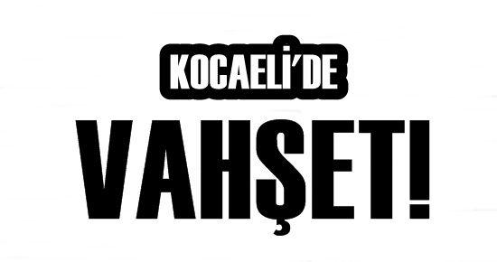 KOCAELİ'DE VAHŞET!