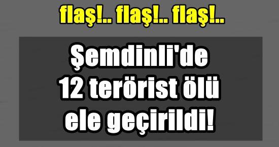 OPERASYON SÜRÜYOR: 12 PKK'LI ÖLDÜRÜLDÜ