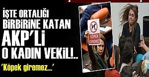 ENGELLİ VEKİL PAVEY'E BİLE ACIMADI!..