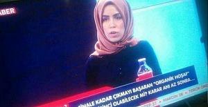 TRT 'HOŞAFI' FİNALE ÇIKARDI!