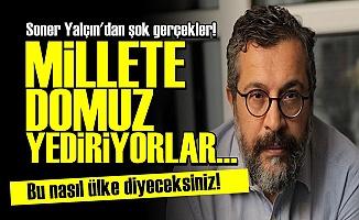 'AKP MİLLETE DOMUZ ETİ YEDİRİYOR'