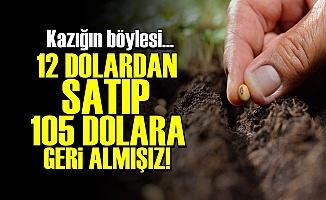 12 DOLARA SATIP 105 DOLARA GERİ ALMIŞIZ!