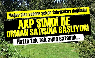 AKP'DEN YEPYENİ BİR TALAN FURYASI ADIMI!..