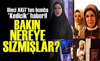 'KEDİCİKLER' BAKIN NEREYE SIZMIŞ!