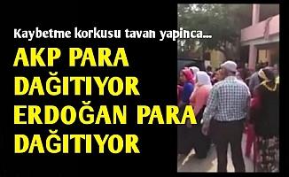 'KOŞUN AKP PARA DAĞITIYOR...'