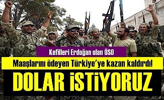 ÖSO: Türkiye Maaşlarımızı Dolar Olarak Versin...