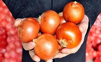Soğanın Fiyatı 10 Lira Olacak!