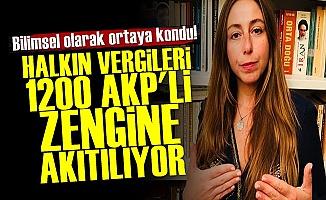 'Halktan Alınan Vergiler 1200 AKP'liye Veriliyor'