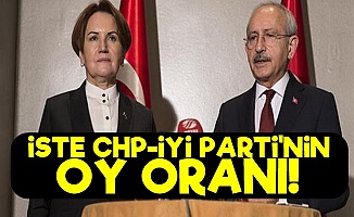 İşte CHP-İyi Parti'nin Oy Oranı!