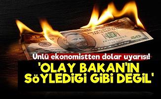 'Dolar Meselesi Bakan'ın Söylediği Gibi Değil'