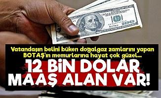 BOTAŞ Memurlarına 12 Bin Dolar Maaş!