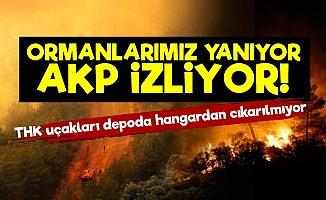 Ormanlarımız Yanıyor AKP Seyrediyor!