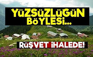 Palovit'te Rüşvet İhalede!