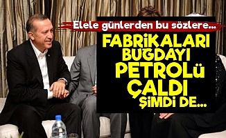 'Erdoğan Fabrikaları, Buğdayı Çaldı, Şimdi de...'