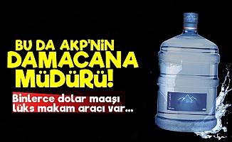 Bunu da Gördük! AKP'nin Damacana Ve Tuvalet Müdürü