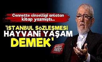 'İstanbul Sözleşmesi Hayvani Yaşam Demek'