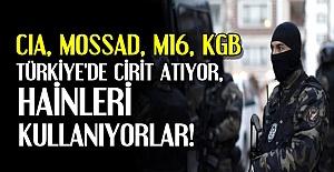 TÜRKİYE'DE CİRİT ATIYORLAR...'