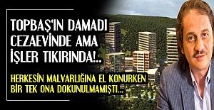 ÇEVRE BAKANLIĞI 'YÜRÜ YA DAMAT BEY' DEDİ..
