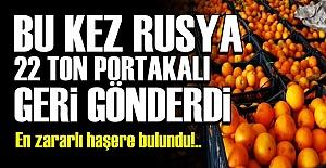 22 TON PORTAKAL GERİ GÖNDERİLDİ!..