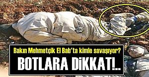 HERKES IŞİD SANIYOR AMA...