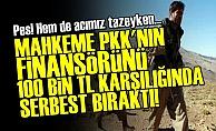 PKK'nın Finansörünü Serbest Bıraktılar!