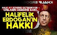'Halifelik Erdoğan'ın Hakkı'