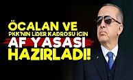 Erdoğan, Öcalan İçin 'Af Yasası' Hazırladı!
