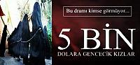 5 BİN DOLARA GENCECİK KIZLAR...
