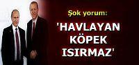 İKİSİNİN DE NE YAPACAĞI BELLİ OLMAZ...