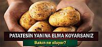 PATATESİN YANINA ELMA KOYARSANIZ...