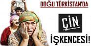 RESMEN ÇİN İŞKENCESİ!