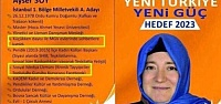 YOK BÖYLE CV! 'KRONİK TAYYİPÇİ'