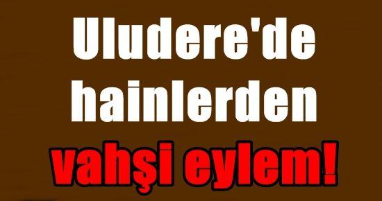 ULUDERE'DE HAİNLERDEN VAHŞİ EYLEM!